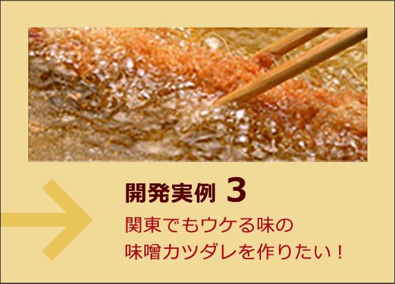 開発実例3 関東でもウケる味の味噌カツダレを作りたい!
